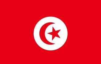 突尼斯簽證