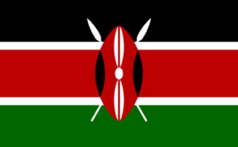 肯尼亚物流