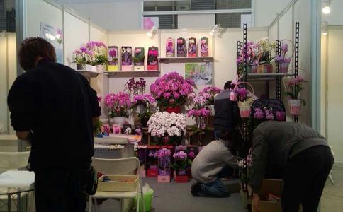 中國(上海)華東進出口交易展覽會ECF(華交會)