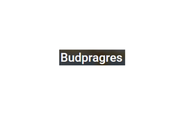 白俄罗斯建材展览会BUDPRAGRES