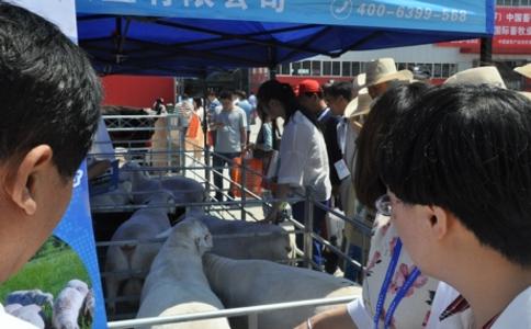 武汉中国畜牧展览会CAHE
