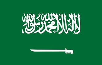 沙特��C