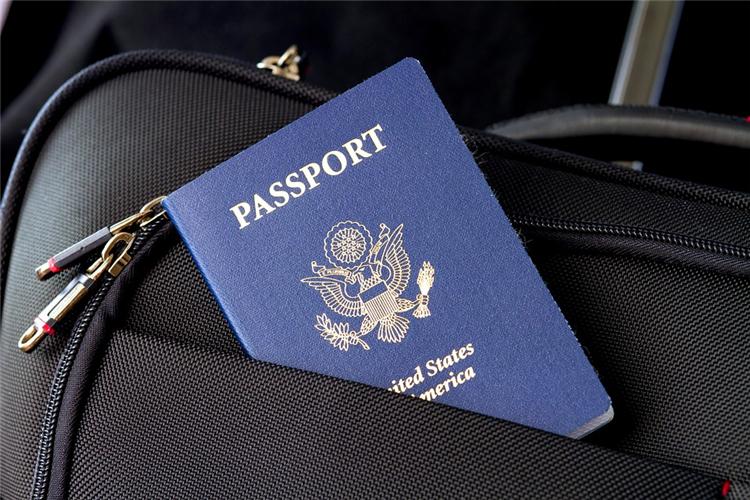 俄罗斯电子签证制度有望从2021年初起实行