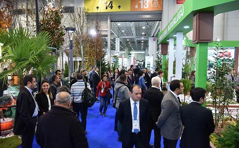 土耳其伊斯坦布爾園林園藝展覽會Flower Show