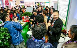第二十届山东果蔬博览会将于11月在烟台盛大举行