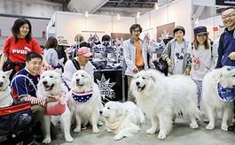 韩国首尔宠物用品展览会规模有多大?
