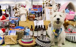 参加新加坡宠物展览会有什么好处?