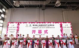 名茶匯聚魔都,第二屆上海茶博會開幕