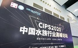 中國水族行業高峰論壇于CIPS廣州寵物展期間成功舉行