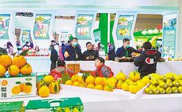 第十八屆中國農交會,現場面積首次突破20萬平米