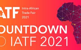 非洲进出口商品交易会线上平台将持续开放至明年