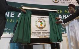 焦点关注:非洲大陆自贸区正式启动