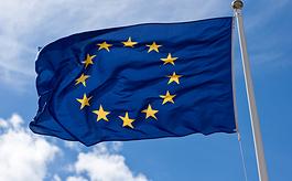 多家投行下调欧元区一季度GDP增长预期