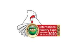 巴基斯坦拉合尔畜牧展览会IPEX
