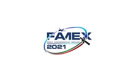 墨西哥克雷塔罗航空展览会FAMEX
